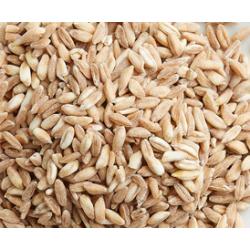 farina grano tenero tipo 0 - 1 kg