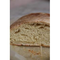 pane di semola grano duro - pugliese