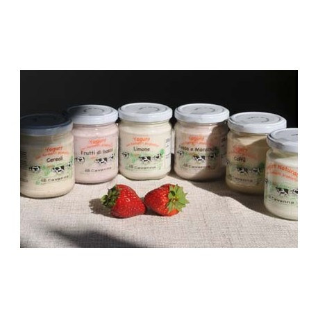 yogurt agrumi - 200 g