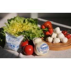 trecce di mozzarella   - 240 g