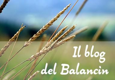 Blog Balancin